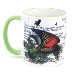 Mug: Kea Parrot Of New Zealand (Colored Rim & Handle)