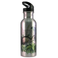 Water Bottle: Kiwi Of New Zealand (Silver)