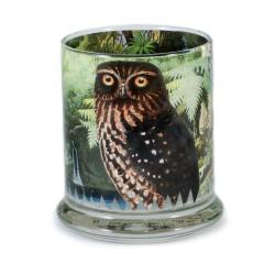 Pen Pot: The Morepork or Ruru Owl (Handmade)