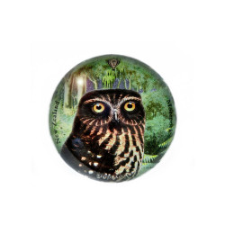 Paperweight: Morepork Owl In New Zealand Forest (Handmade)
