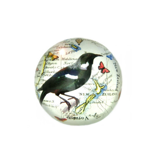 Paperweight: Tui Bird and Antique Map of New Zealand (Handmade). Made in New Zealand gift.
