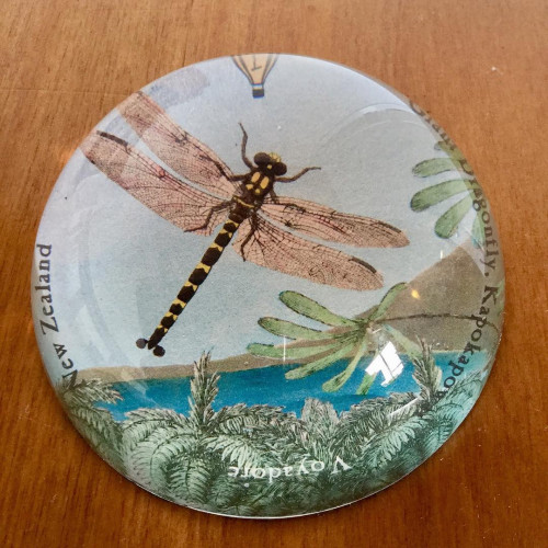 Paperweight: Giant Dragonfly (Handmade). Made in New Zealand gift.