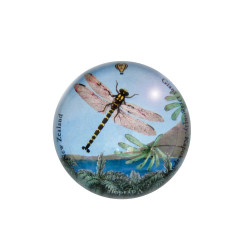 Paperweight: Giant Dragonfly (Handmade)