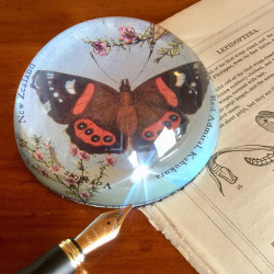 Paperweight: Red Admiral Butterfly (Handmade)