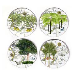 Coasters: NZ Flora. Nikau Palm, Tree Fern, Kauri and Kowhai. Set of 4 (Hardboard)