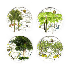 Coasters: NZ Flora. Nikau Palm, Tree Fern, Kauri and Kowhai. Set of 4 (Ceramic)