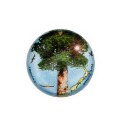 Paperweight: Kauri Tree (Handmade)