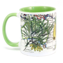 Mug: Kowhai Tree And Pacific Map (Colored Inner & Handle)