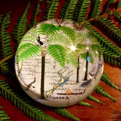 Paperweight: Tree Ferns And Pacific Map (Handmade)