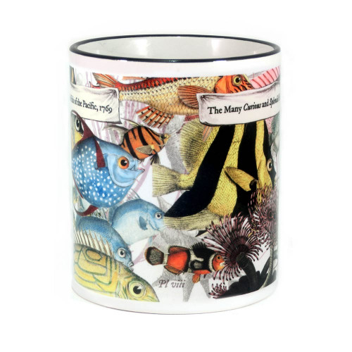 Mug: The Many Curious and Splendid Fish of the Pacific, 1769 (Colored Rim & Handle). Made in New Zealand gift.