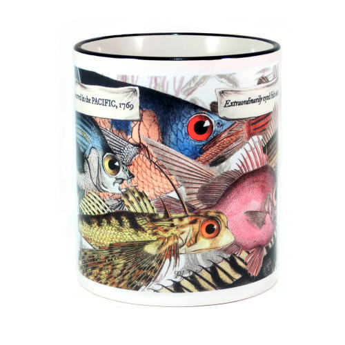 Mug: Extraordinarily Eyed Fish Observed in The Pacific, 1776 (Colored Rim & Handle). Made in New Zealand gift.