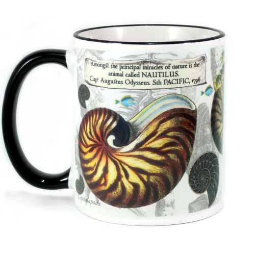 Mug: Nautilus Found in The Pacific Ocean, 1796 (Colored Rim & Handle). Made in New Zealand gift.