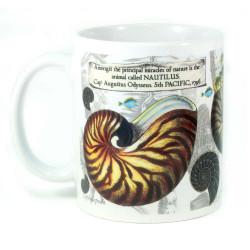 Mug: Nautilus Found in The Pacific Ocean, 1796 (White Mug)