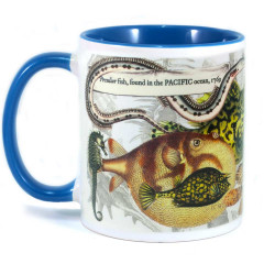 Mug: Peculiar Fish Found in The Pacific Ocean, 1769 (Colored Inner & Handle)