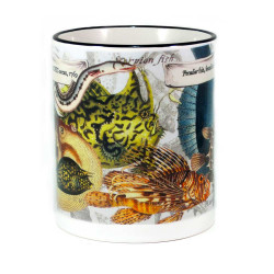 Mug: Peculiar Fish Found in The Pacific Ocean, 1769 (Colored Rim & Handle)