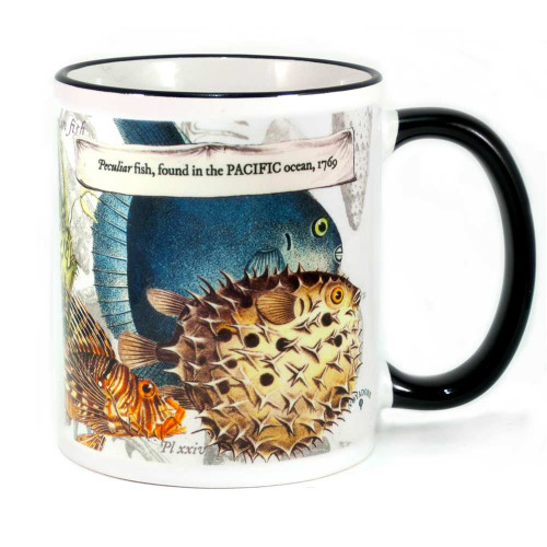 Mug: Peculiar Fish Found in The Pacific Ocean, 1769 (Colored Rim & Handle). Made in New Zealand gift.