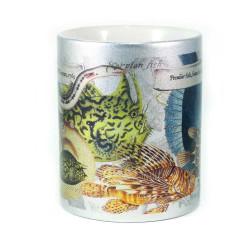 Mug: Peculiar Fish Found in The Pacific Ocean, 1769 (Sparkling Silver Mug)