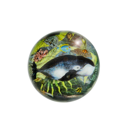 Paperweight: Right Whale Or Great Mysticete (Handmade). Made in New Zealand gift.