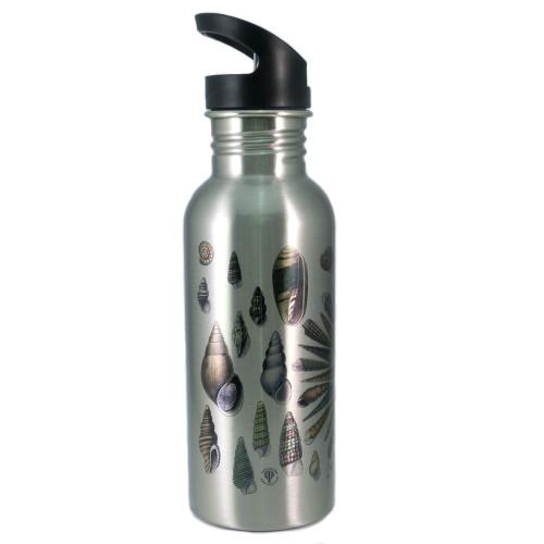 Water Bottle: Seashells of New Zealand (Silver)