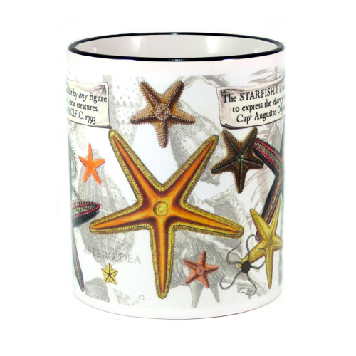 Mug: Starfish Found in The Pacific Ocean, 1793 (Colored Rim & Handle). Made in New Zealand gift.